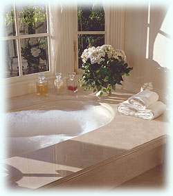 Whirlpool Tubs, Showers and Fantasy Steam Spas